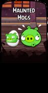 Призрачные свиньи