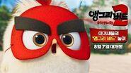 (우리말 버전) 앵그리 버드 2 독수리 왕국의 침공 아기새들의 앵그리 버드 놀이!