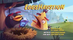 Eggshaution TC