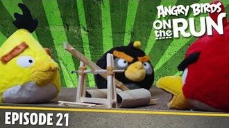 The Birds Get Angry - S1 Ep21