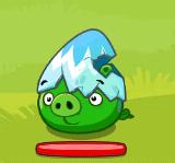 Синее яйцо свин