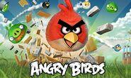 Angry birds mult