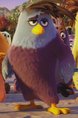 HandsomeBird