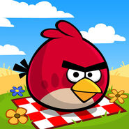 Angry-birds-seasons-icons-summer