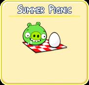 Summer pignic
