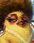 Flocker Yellow Portrait 043