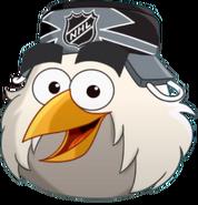 Pájaro Hockey