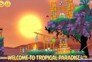 Angry-Birds-Seasons-Tropigal-Paradise-Image-4-310x207