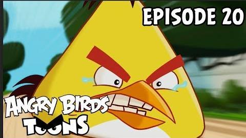 Angry Birds Toons Run Chuck Run - S1 Ep20