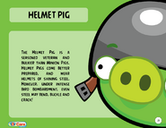 Helmet Pig Toy Care