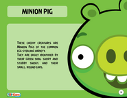621px-Minion Pig Toy Care