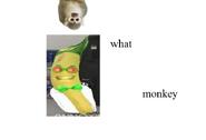 AO Dr Bananas