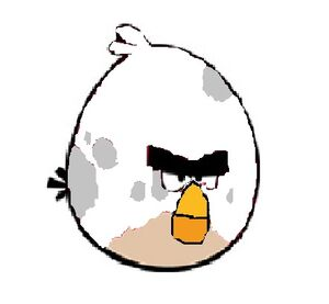Big White Bird