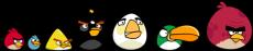 Sevenknownbirds