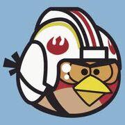 Luke (Red Bird)