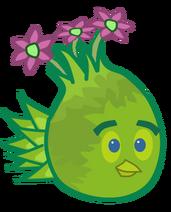 Plantra DOE