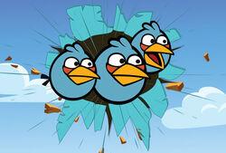 Angry-birds-perfil-jay-jake-jim