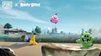 Angry Birds x PUBG MOBILE-0