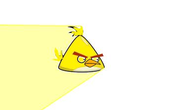 Lightspeed bird
