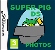 SuperpigDSi