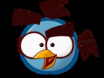 Blue lighting bird (1)