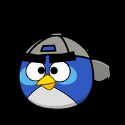 Nimur s bird