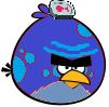 Fish Box Bird