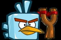 Icebird DOE