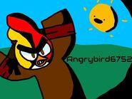 Angrybird6752-2.