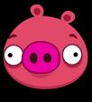 Crimson Pig