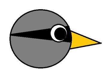 XX Bird