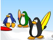 Blue penguins 3