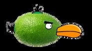 Limebird