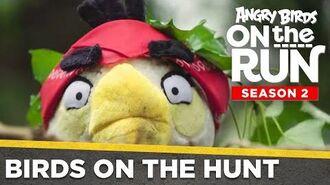 Angry Birds On The Run Birds On The Hunt - Ep5 S2