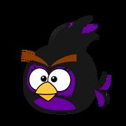 The dark birdy