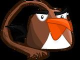 Slapping Brown Bird