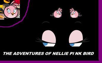 PinkBirdAdventures