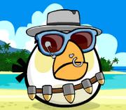 Gadget Bird
