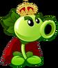 King Plant