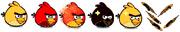 Sun Bird (newer)
