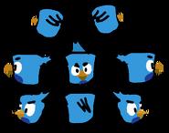 IceBird's Net