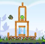 Swampbirdinaction