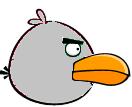 Platinum-Bird