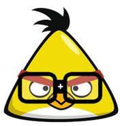 Plusbird
