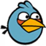 Patrick Mealey T. Blue Bird 1