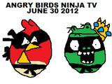 Angry Birds Ninja - TV