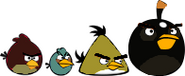 Silly Angry Birds