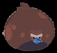 Time Slammer Bird