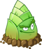 Bamboo shoot HD