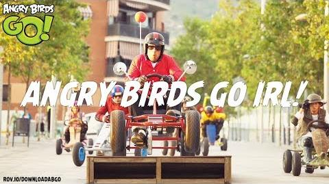 NEW! Angry Birds Go! in Real Life